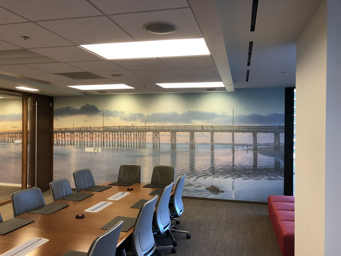 Custom office wall murals
