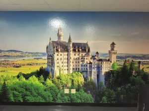 Attractive Nature Wall Murals Printed by VizComm Signs & Graphics