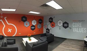Custom Large Wall Murals Installed by VizComm Signs & Graphics