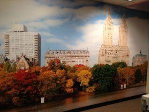 20-foot-Wide Custom Wall Murals