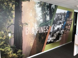 Commercial 3D Wall Murals Custom Made by VizComm Signs & Graphics